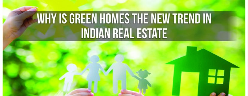 Why is green homes the new trend in Indian real estate